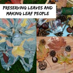 preserving leaves and making leaf people