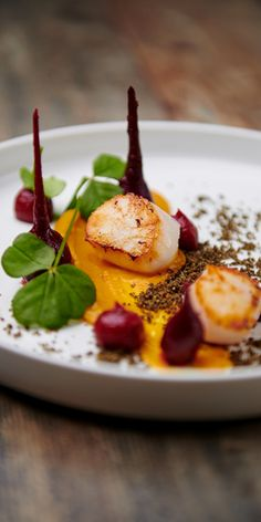 Scallops with butternut squash cream, beetroot and coffee crumble - Detail - Chef - Scallops with butternut squash cream, beetroot and coffee crumble – Detail – Chef - I Want Food, Love Food, Amsterdam Food, Food Cravings, Food Presentation, Food Plating, Food Design, Yummy Food, Yummy Lunch