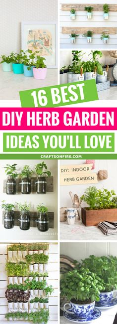 Easy diy indoor herb garden ideas