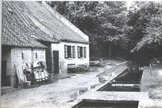 Belfeld, Hoeve Maalbeek aan de  Maalbeek., hallenhuis uit 1766.   foto 1958