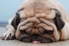 Is It Friday Yet???!!!
