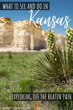 If you're taking a weekend road trip or a long vacation, don't underestimate Kansas! There are some amazing popular things to do in Kansas but there are also some beautiful hidden gems to see! Travel to the city and then take the roads less traveled and we'll show you some off the beaten path places to see! Put Kansas on your destination radar for sure! Amazing bucket list places to see! The kids will love these finds too! Great family vacation tips and ideas! #travel #kansas #vacation
