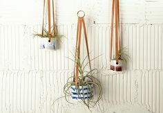 Joinery NYC plant holders