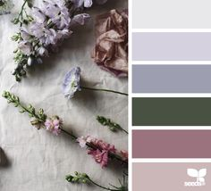 Design seeds color inspiration