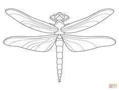 Dragonfly Coloring pages. Select from 32014 printable Coloring pages of cartoons, animals, nature, Bible and many more. Dragonfly Drawing, Dragonfly Images, Wings Drawing, Dragonfly Wings, Free Printable Coloring Pages, Free Coloring Pages, Coloring Books, Pencil Drawing Pictures, Pictures To Draw