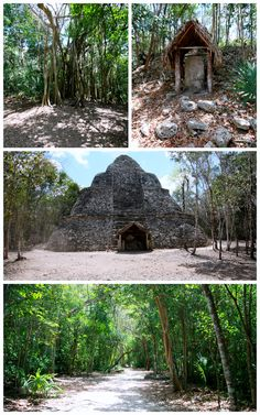 #Coba #Mexico Coba is an amazing place to see Mayan ruins and the only pyramid you can still climb!