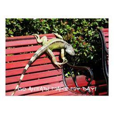 Iguana Humor Poster #animals #funny #humor #reptiles