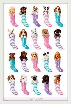Poster com Moldura Branca Pets Filhotes Dentro de Botas 64x94cm - Decore  Pronto Molduras Brancas 2e72994491831
