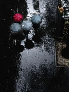 #rain and #umbrellas. I like wet street!