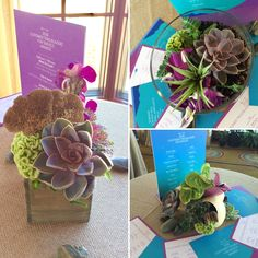 Corporate Events, Succulents, Environment, Gift Wrapping, Floral, Plants, Gifts, Decor, Gift Wrapping Paper