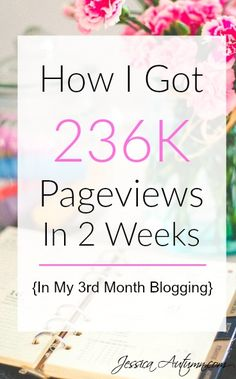 How I Got 236k Pageviews In 2 Weeks {In My 3rd Month Blogging} If you are…