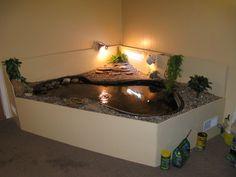 Ultimate indoor turtle habitat! Because turtles need love too ...