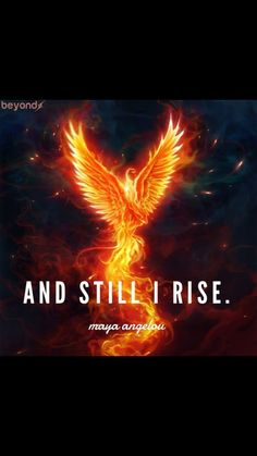 """""""I'm no immortal,"""" He says, gesturing himself. And Still I rise. Phoenix Quotes, Phoenix Images, Phoenix Artwork, Phoenix Rising, Dark Phoenix, Phoenix Tattoo Design, Phoenix Tattoos, Crow Tattoos, Ear Tattoos"""