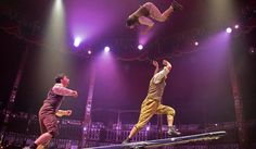 The Korean Plank is a skill that only a handful of people in the world are trained for due to the intense danger of the act. These three are masters in Big Top, Plank, Good Times, Masters, Acting, Celebration, Korean, Tours, Concert