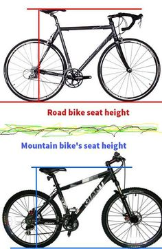 Road Bike Vs Mountain Bike Cover Page Professional Mountain