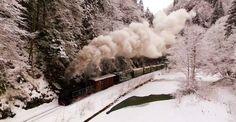 Imagini spectaculoase cu mocăniță într-un peisaj de basm / VIDEO Romania, Train, Outdoor, Outdoors, Outdoor Games, The Great Outdoors, Strollers
