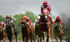 Horse racing. http://www.amazon.co.uk/dp/B00Z4T4TFE