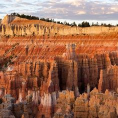 nat geo by #irablockphoto These rock formations I shot last month look prehistoric. The photo was taken at #Bryce Canyon #Utah