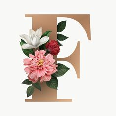 Search Free and Premium stock photos, vectors and psd mockups Fancy Letters, Floral Letters, Monogram Letters, Pop Art Illustration, Free Illustrations, Space Phone Wallpaper, Floral Font, Paper Quilling Cards, Animal Print Wallpaper