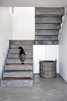 16 Super Cool Concrete Staircase Ideas - - These days, a concrete staircase is really famous for a modern house. The design of staircase with its concrete material is simple and easy to make. It is another option for you who want to design you. Concrete Staircase, Concrete Steps, Wood Stairs, Basement Stairs, House Stairs, Staircase Design, Concrete Floors, Staircase Ideas, Stone Stairs