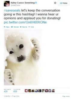 Kaley Cuoco Joins Fight Against the Canadian Seal Hunt