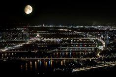 Wien Donau bei Nacht Vom Kahlenberg Honeymoon Pictures, Vienna, Skyline, Places, Modern, Night, City, Lugares, Trendy Tree