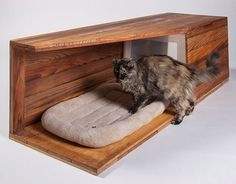 Beautiful Cat Shelter Designs from Architects for Animals LA Event