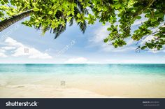 Tropical Beach Seascape Beautiful Nature Стоковые фотографии 294195551…