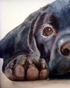 """The painting is by Melanie's mom, who owns a studio in Little Washington, NC, and who posts her work on her facebook page, Watercolours by Carol Mann. I was so drawn to her pet portraits and how well she captures each animal's spirit (especially the labs!). One of these paintings would make an incredible gift for the pet lover in your life!"" Bungalow Blue Interiors - Home"