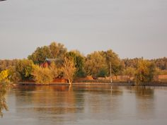 toamna Danube Delta, Landscaping, River, Painting, Outdoor, Art, Outdoors, Art Background, Painting Art