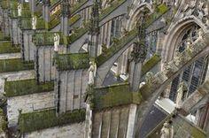Sint-jan Den Bosch bovenaanzicht door Marc Mulders Prachtig
