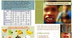 Fluorosis Facts - a four page booklet on basic information of this issue in Assamese, developed by Nilutpal Das Booklet, Pdf, Facts, India, Truths