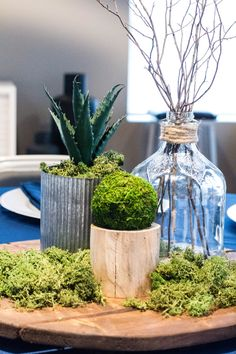 Earthy nature decor center pieces new ideas Party Table Centerpieces, Succulent Centerpieces, Centerpiece Decorations, Reception Decorations, Rustic Birthday, Birthday Table, Birthday Ideas, 90th Birthday, Masculine Centerpieces