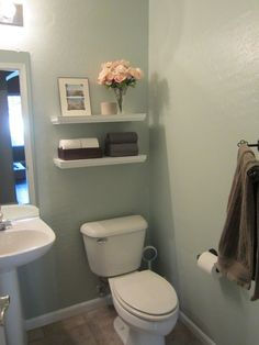 Small bathroom - I like the storage and paint colour