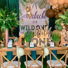 Safari themed wild one 1st birthday party decorations from CV Linens. Click to shop all our budget friendly party supplies, balloons, table linens, and more! Simple wild one 1st birthday party celebration party decor with emerald linens, neutral balloons, giraffes and monkey decorations. Safari themed baby shower decorations and ideas for gender neutral baby showers and gender neutral kids birthday party ideas. #wildonebirthdaypartyboys #wildonebirthdayparty #safaribirthdayparty… 1st Birthday Boy Themes, Birthday Party Treats, 1st Birthday Party Decorations, Wild One Birthday Party, Safari Birthday Party, Birthday Party Celebration, Superhero Birthday Party, Boy Birthday Parties, Monkey Decorations