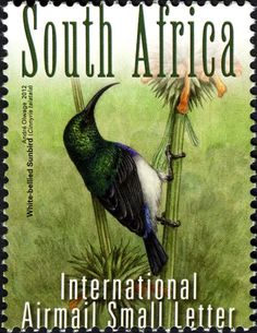 Stamps showing White-bellied Sunbird Cinnyris talatala, with distribution map showing range