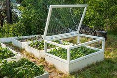 home of voxgirl: rådjurssäkert lock till pallkrage Garden Yard Ideas, Garden Projects, Garden Compost, Vegetable Garden, Design Jardin, Garden Design, Screen Plants, Hydroponic Plants, Growing Gardens