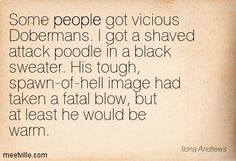Some people got vicious Dobermans. I got a shaved attack poodle in a black sweater. His tough, spawn-of-hell image had taken a fatal blow, but at least he would be warm. - (Kate about Grendel) - Magic Bleeds: Kate Daniels Series, Book 4 by Ilona Andrews