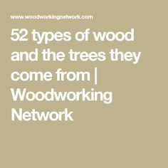 52 types of wood and the trees they come from | Woodworking Network
