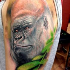 Shoulder Realistic Gorilla Tattoo by Triple Six Studios Cool Tattoos, Tatoos, Awesome Tattoos, Female Gorilla, Gorilla Tattoo, Vegan Tattoo, Tattoo Inspiration, Tattoo Artists, Art Projects