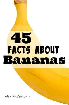 Did you know that bananas are radioactive? Read these  facts to learn more