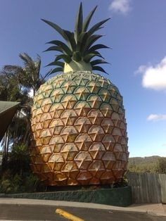 The Big Pineapple on Queensland's Sunshine Coast, Australia.