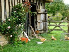 La ferme du manoir de Coupesarte - Normandie
