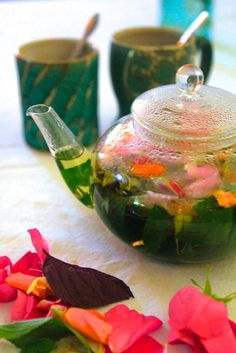 Herbal Infusions and Decoctions – Preparing Medicinal Teas