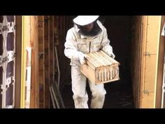 контроль зимовки. Пасека выходного дня - YouTube Bee Hives, Vertical Gardens, Cabin Homes, Honey, Wood, Youtube, Blue Prints, Woodwind Instrument, Timber Wood