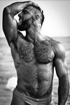 """hairy-chests: """" hairy chest """"                                                                                                                                                                                 More"""