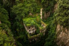 Photos Of Nature Winning The Battle Against Civilization - Old Abandoned Mill In Sorrento, Italy Abandoned Library, Abandoned Ships, Abandoned Buildings, Abandoned Places, Abandoned Mansions, Sorrento Italia, Nature Images, Nature Photos, Nature Nature