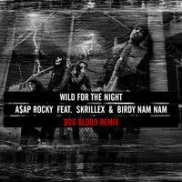 FUCKING FUCK YEAH. :) A$AP ROCKY- WILD FOR THE NIGHT (DOG BLOOD REMIX) by dogblood on SoundCloud