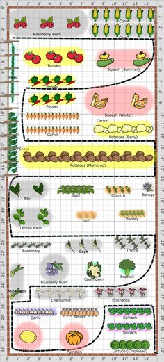 Garden Plan - 2013: Veg Garden 1, check out the great irrigation feature! You can plan for whatever your water needs are with the Grow Veg Garden Planner, it even shows you the parts you need.