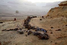 Scorched Desert skeleton.